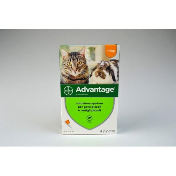 Advantage 40 mg Soluzione Antiparassitaria Spot-On Gatti e Conigli 4 Pipette