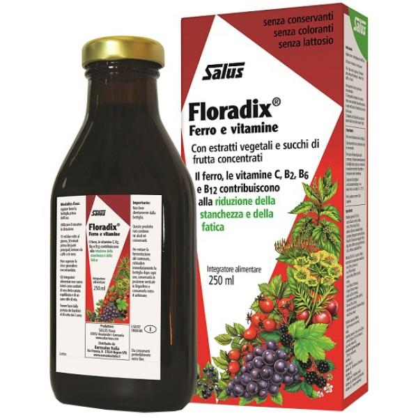 FLORADIX Integr.Ferro 250ml