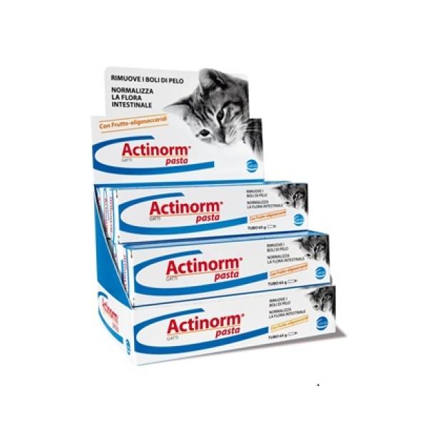Ceva Actinorm Pasta Gatti 65 grammi - Integratore Intestinale