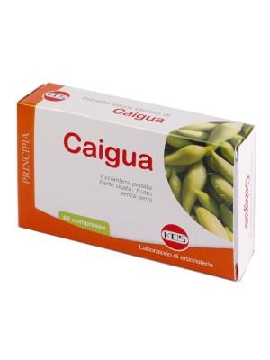 Kos Caigua Estratto Secco 60 Compresse - Integratore per il Metabolismo