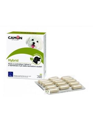 HYBRID 30 Cpr