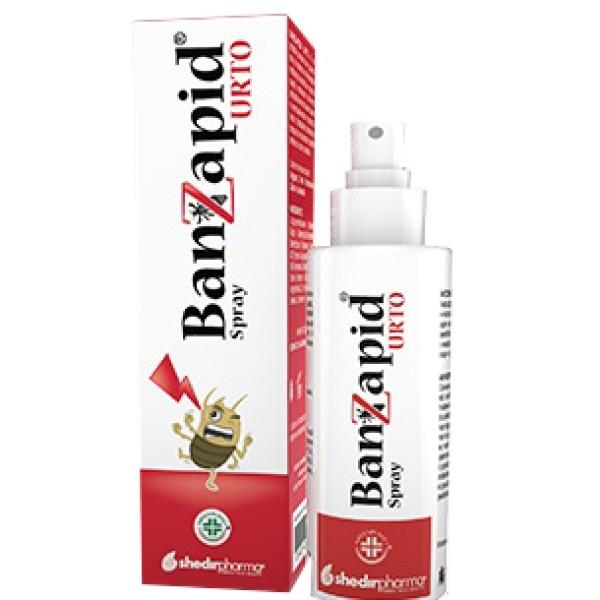 Banzapid Spray Trattamento 100 ml